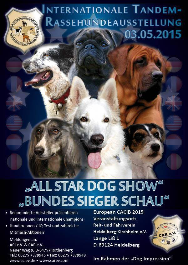 Internationale Tandem Rassehunde Ausstellung 03.05.2015 in Heidelberg