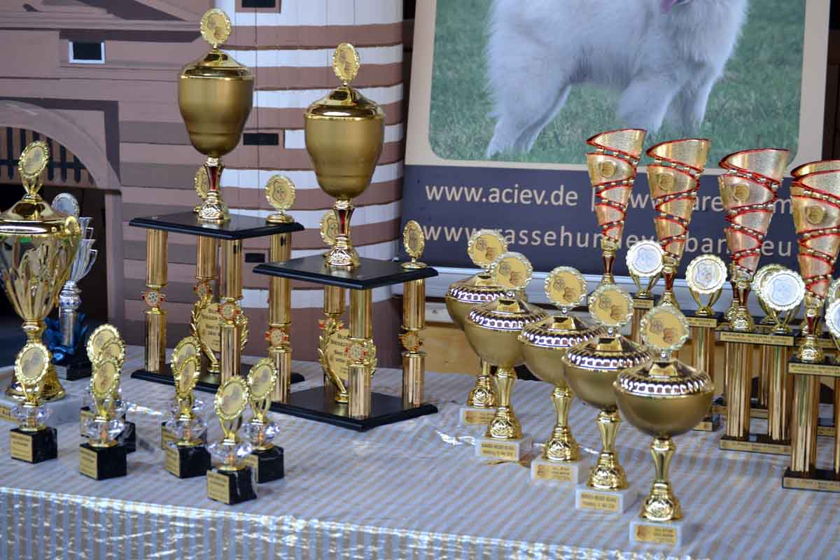 All Star Dog Show und Bundessiegerschau 2016