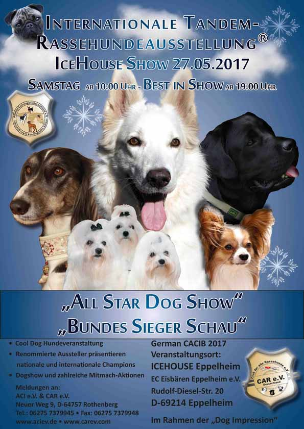 2017 ALL STAR DOG SHOW - BUNDES SIEGER SCHAU