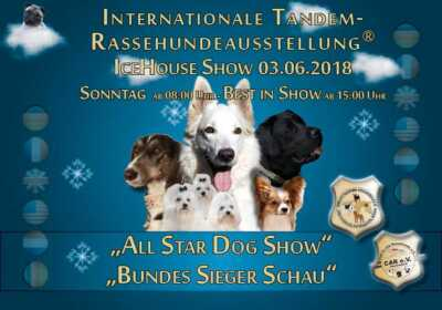 Internationale Tandem-Rassehunde-Ausstellung in Eppelheim-Heidelberg